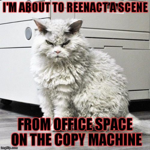 I'M ABOUT TO REENACT A SCENE FROM OFFICE SPACE ON THE COPY MACHINE | made w/ Imgflip meme maker