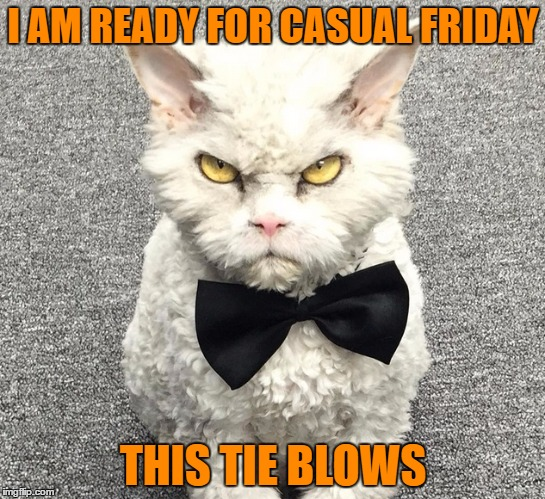 I AM READY FOR CASUAL FRIDAY THIS TIE BLOWS | made w/ Imgflip meme maker