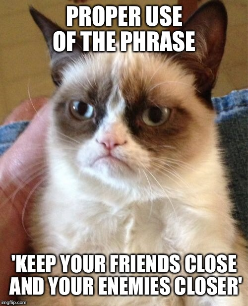 Grumpy Cat Meme | PROPER USE OF THE PHRASE 'KEEP YOUR FRIENDS CLOSE AND YOUR ENEMIES CLOSER' | image tagged in memes,grumpy cat | made w/ Imgflip meme maker