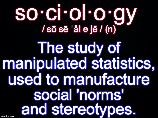 Sociology defined | so·ci·ol·o·gy and stereotypes. / sō sē ˈäl ə jē / (n) The study of manipulated statistics, used to manufacture social 'norms' | image tagged in sociology,defination | made w/ Imgflip meme maker