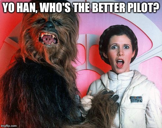 chewy | YO HAN, WHO'S THE BETTER PILOT? | image tagged in chewy | made w/ Imgflip meme maker