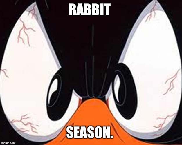 Angry duck | RABBIT SEASON. | image tagged in angry duck | made w/ Imgflip meme maker