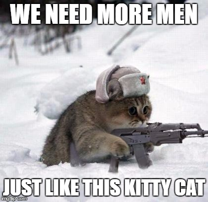 Cute Sad Soviet War Kitten | WE NEED MORE MEN JUST LIKE THIS KITTY CAT | image tagged in cute sad soviet war kitten | made w/ Imgflip meme maker