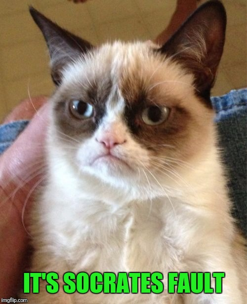 Grumpy Cat Meme | IT'S SOCRATES FAULT | image tagged in memes,grumpy cat | made w/ Imgflip meme maker