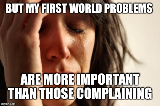 First World Problems Meme | BUT MY FIRST WORLD PROBLEMS ARE MORE IMPORTANT THAN THOSE COMPLAINING | image tagged in memes,first world problems | made w/ Imgflip meme maker