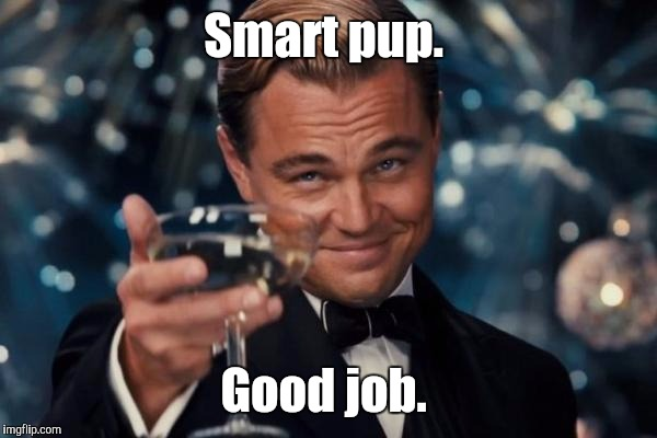 Leonardo Dicaprio Cheers Meme | Smart pup. Good job. | image tagged in memes,leonardo dicaprio cheers | made w/ Imgflip meme maker