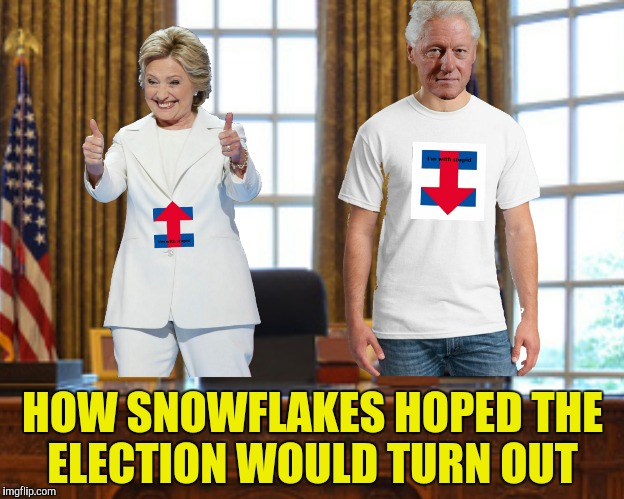 HOW SNOWFLAKES HOPED THE ELECTION WOULD TURN OUT | made w/ Imgflip meme maker