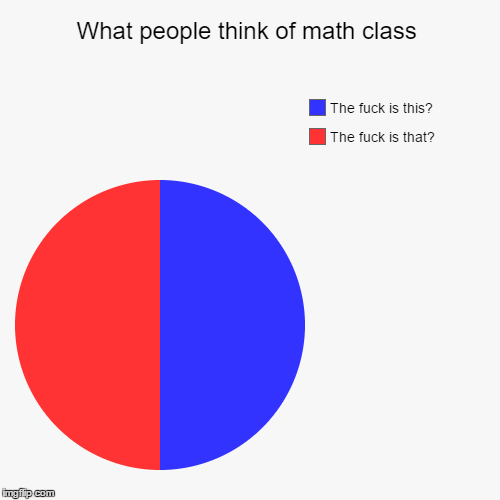 What people think of math class | The f**k is that?, The f**k is this? | image tagged in funny,pie charts | made w/ Imgflip pie chart maker