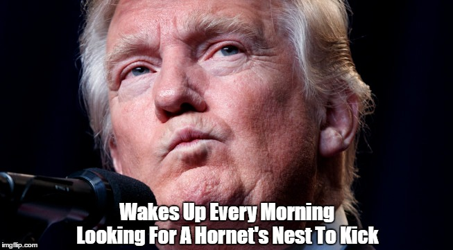Image result for pax on both houses trump hornet's nest
