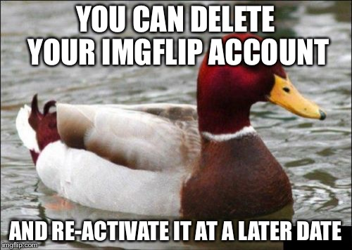Malicious Advice Mallard Meme | YOU CAN DELETE YOUR IMGFLIP ACCOUNT AND RE-ACTIVATE IT AT A LATER DATE | image tagged in memes,malicious advice mallard | made w/ Imgflip meme maker