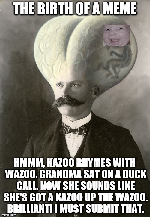 A Rare Glimpse Inside The Mind Of A Memer | THE BIRTH OF A MEME HMMM, KAZOO RHYMES WITH WAZOO. GRANDMA SAT ON A DUCK CALL. NOW SHE SOUNDS LIKE SHE'S GOT A KAZOO UP THE WAZOO. BRILLIANT | image tagged in memes | made w/ Imgflip meme maker