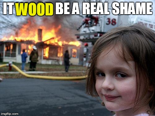 Disaster Girl Meme | IT WOOD BE A REAL SHAME WOOD | image tagged in memes,disaster girl | made w/ Imgflip meme maker