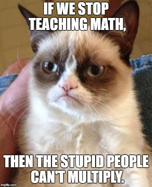 Grumpy Cat | IF WE STOP TEACHING MATH, THEN THE STUPID PEOPLE CAN'T MULTIPLY. | image tagged in memes,grumpy cat | made w/ Imgflip meme maker