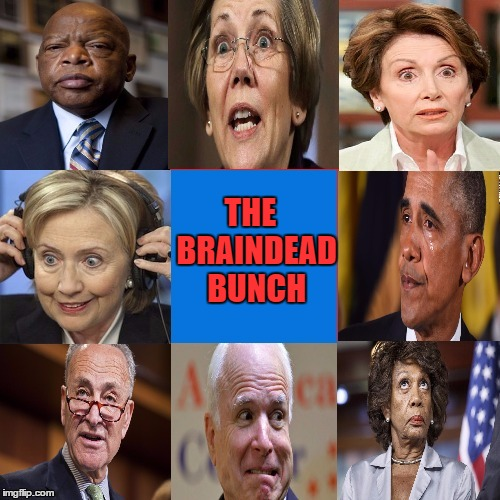 The BrainDead Bunch | THE  BRAINDEAD BUNCH | image tagged in dem and rino,idiots | made w/ Imgflip meme maker