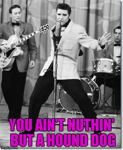 YOU AIN'T NUTHIN' BUT A HOUND DOG | made w/ Imgflip meme maker