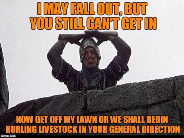 Taunting French Guard | I MAY FALL OUT, BUT YOU STILL CAN'T GET IN NOW GET OFF MY LAWN OR WE SHALL BEGIN HURLING LIVESTOCK IN YOUR GENERAL DIRECTION | image tagged in taunting french guard | made w/ Imgflip meme maker