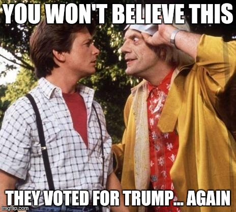 imagine… | YOU WON'T BELIEVE THIS THEY VOTED FOR TRUMP… AGAIN | image tagged in doc brown marty mcfly,trump,imagine,funny | made w/ Imgflip meme maker