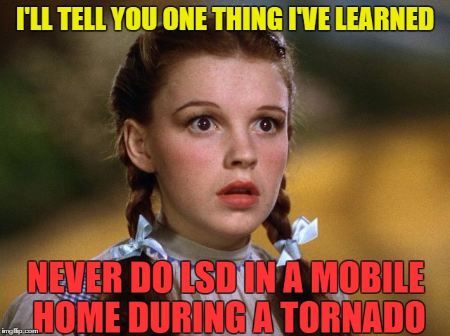 Hindsight is 20/20 | I'LL TELL YOU ONE THING I'VE LEARNED NEVER DO LSD IN A MOBILE HOME DURING A TORNADO | image tagged in memes,wizard of oz | made w/ Imgflip meme maker