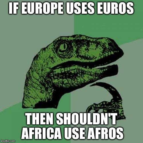 Philosoraptor Meme | IF EUROPE USES EUROS THEN SHOULDN'T AFRICA USE AFROS | image tagged in memes,philosoraptor | made w/ Imgflip meme maker