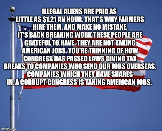 Make America Great  | ILLEGAL ALIENS ARE PAID AS LITTLE AS $1.21 AN HOUR. THAT'S WHY FARMERS HIRE THEM. AND MAKE NO MISTAKE, IT'S BACK BREAKING WORK THESE PEOPLE  | image tagged in make america great | made w/ Imgflip meme maker