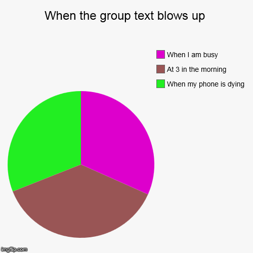 When the group text blows up | When my phone is dying, At 3 in the morning, When I am busy | image tagged in funny,pie charts | made w/ Imgflip pie chart maker