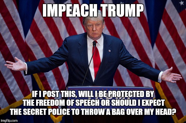 Donald Trump | IMPEACH TRUMP IF I POST THIS, WILL I BE PROTECTED BY THE FREEDOM OF SPEECH OR SHOULD I EXPECT THE SECRET POLICE TO THROW A BAG OVER MY HEAD? | image tagged in donald trump,anti trump,anti trump meme,trump | made w/ Imgflip meme maker
