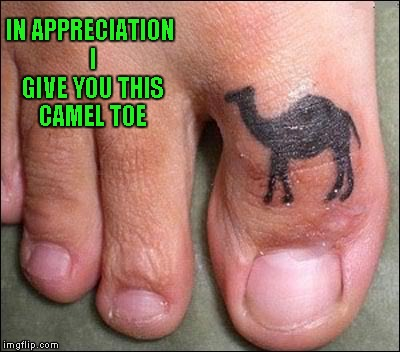 IN APPRECIATION I GIVE YOU THIS CAMEL TOE | made w/ Imgflip meme maker