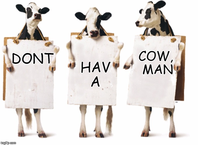 Don't have a cow man - Famous Quote Weekend - Feb 17-19 | DONT HAV     A COW, MAN | image tagged in chick-fil-a 3-cow billboard,famous quote weekend,chick-fil-a,the simpsons,bart simpson,waffle fries | made w/ Imgflip meme maker