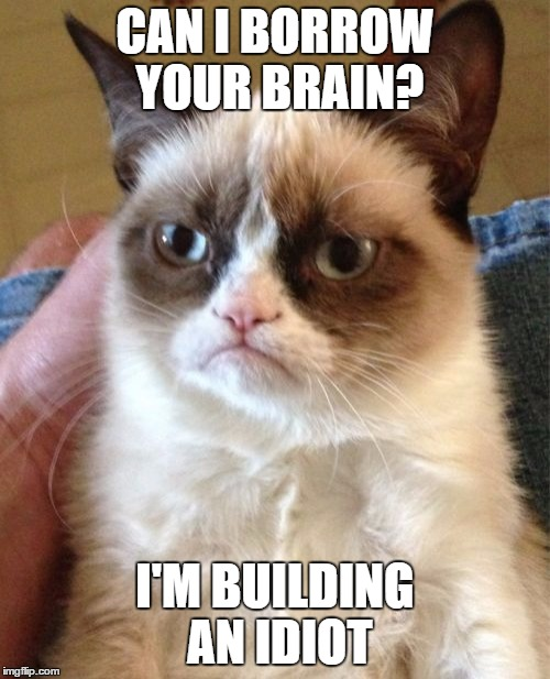 Grumpy Cat Meme | CAN I BORROW YOUR BRAIN? I'M BUILDING AN IDIOT | image tagged in memes,grumpy cat | made w/ Imgflip meme maker