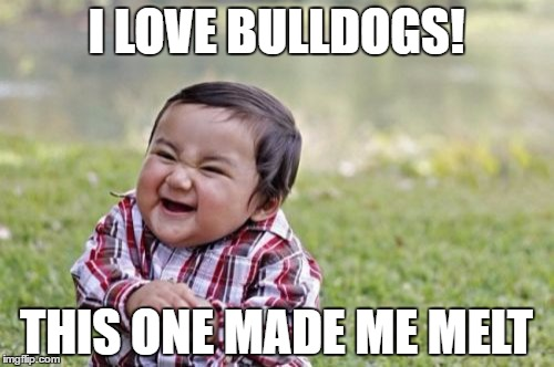 Evil Toddler Meme | I LOVE BULLDOGS! THIS ONE MADE ME MELT | image tagged in memes,evil toddler | made w/ Imgflip meme maker