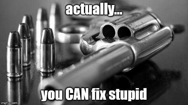 actually... you CAN fix stupid | made w/ Imgflip meme maker
