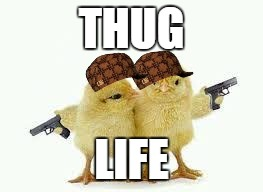 THUG LIFE | image tagged in thug life,scumbag | made w/ Imgflip meme maker