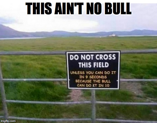 Warning Sign | THIS AIN'T NO BULL | image tagged in funny signs | made w/ Imgflip meme maker