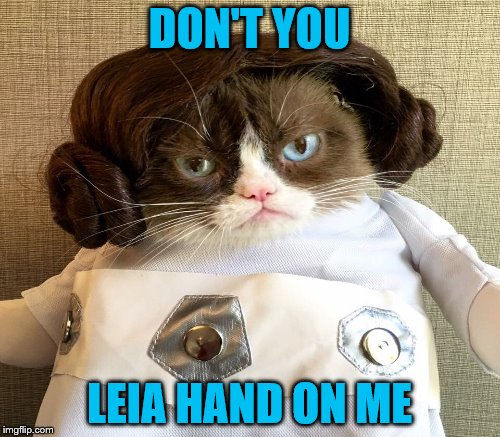 DON'T YOU LEIA HAND ON ME | made w/ Imgflip meme maker