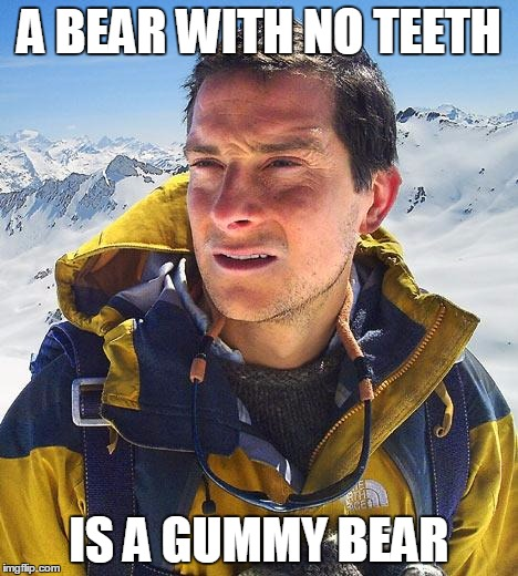 Bear Grylls |  A BEAR WITH NO TEETH; IS A GUMMY BEAR | image tagged in memes,bear grylls | made w/ Imgflip meme maker