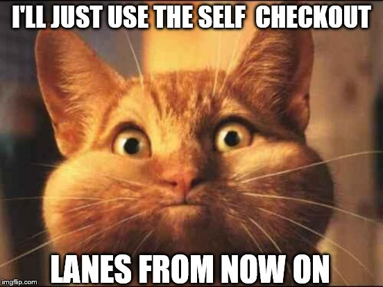 I'LL JUST USE THE SELF  CHECKOUT LANES FROM NOW ON | made w/ Imgflip meme maker