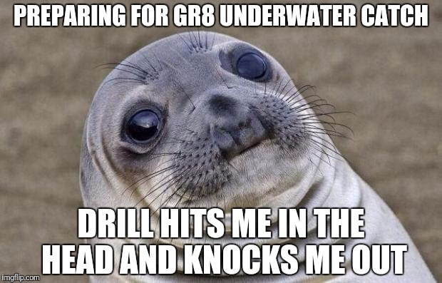 Awkward Moment Sealion Meme | PREPARING FOR GR8 UNDERWATER CATCH DRILL HITS ME IN THE HEAD AND KNOCKS ME OUT | image tagged in memes,awkward moment sealion | made w/ Imgflip meme maker