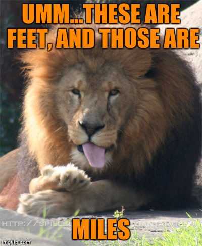 Cecil | UMM...THESE ARE FEET, AND THOSE ARE MILES | image tagged in cecil | made w/ Imgflip meme maker