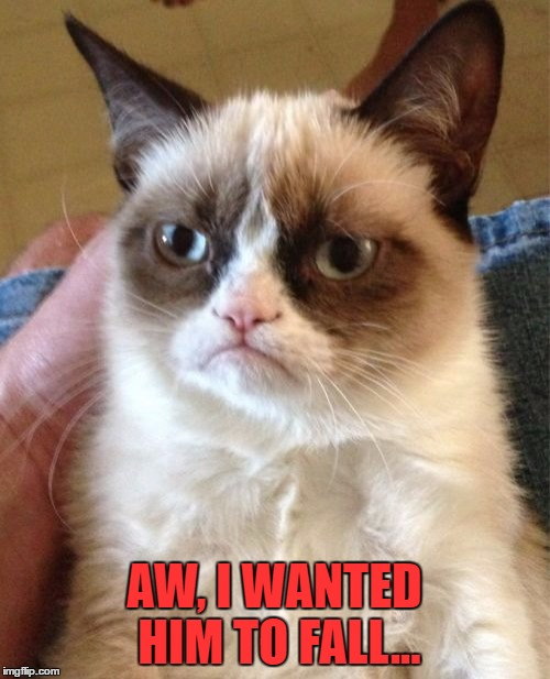 Grumpy Cat Meme | AW, I WANTED HIM TO FALL... | image tagged in memes,grumpy cat | made w/ Imgflip meme maker