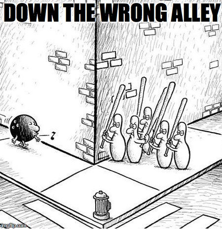 When Pins Go On Strike | DOWN THE WRONG ALLEY | image tagged in bowling ball,funny meme | made w/ Imgflip meme maker
