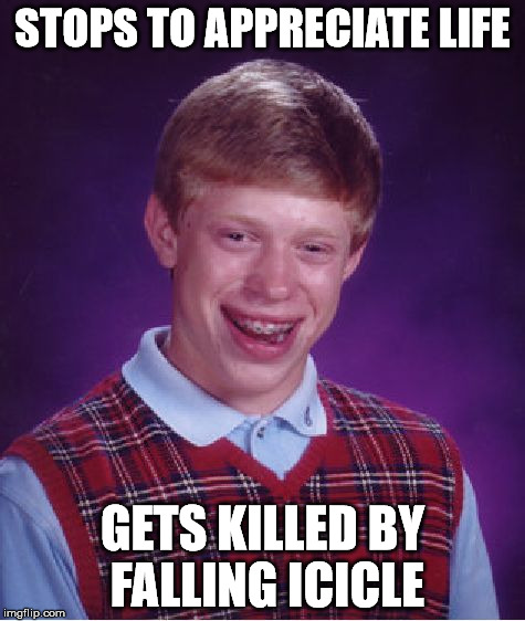 Bad Luck Brian Meme | STOPS TO APPRECIATE LIFE GETS KILLED BY FALLING ICICLE | image tagged in memes,bad luck brian | made w/ Imgflip meme maker