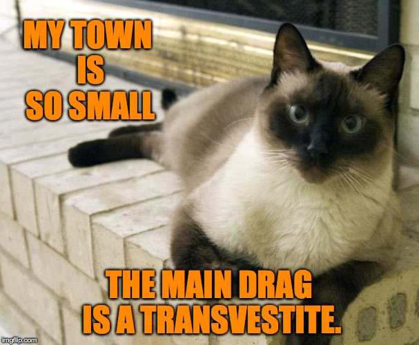 how small is it? | MY TOWN IS SO SMALL THE MAIN DRAG IS A TRANSVESTITE. | image tagged in - | made w/ Imgflip meme maker