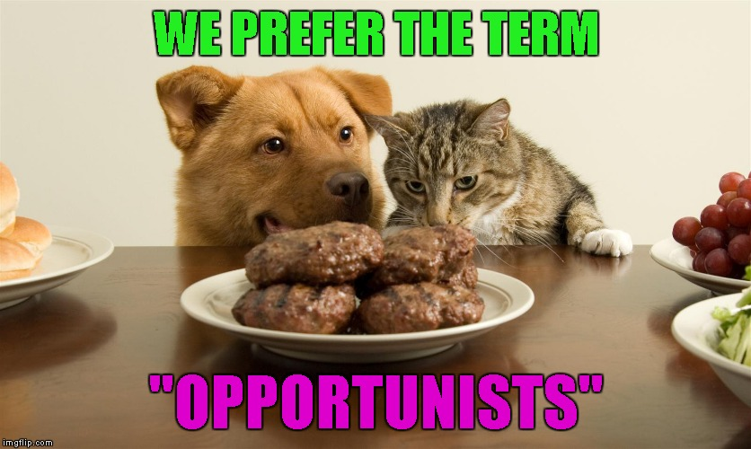 "WE PREFER THE TERM ""OPPORTUNISTS"" 