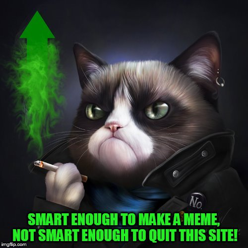 SMART ENOUGH TO MAKE A MEME, NOT SMART ENOUGH TO QUIT THIS SITE! | made w/ Imgflip meme maker