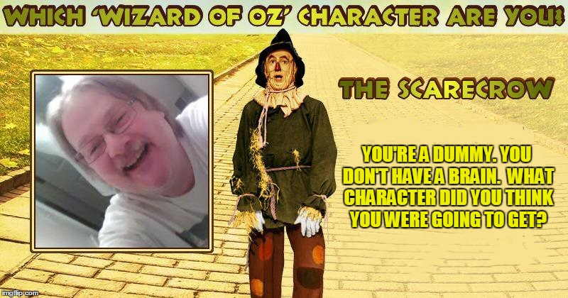 At least I'm not a flying monkey! | YOU'RE A DUMMY. YOU DON'T HAVE A BRAIN.  WHAT CHARACTER DID YOU THINK YOU WERE GOING TO GET? | image tagged in wizard of oz scarecrow | made w/ Imgflip meme maker