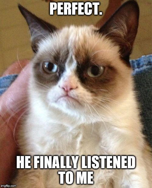 Grumpy Cat Meme | PERFECT. HE FINALLY LISTENED TO ME | image tagged in memes,grumpy cat | made w/ Imgflip meme maker