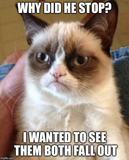 Grumpy Cat Meme | WHY DID HE STOP? I WANTED TO SEE THEM BOTH FALL OUT | image tagged in memes,grumpy cat | made w/ Imgflip meme maker