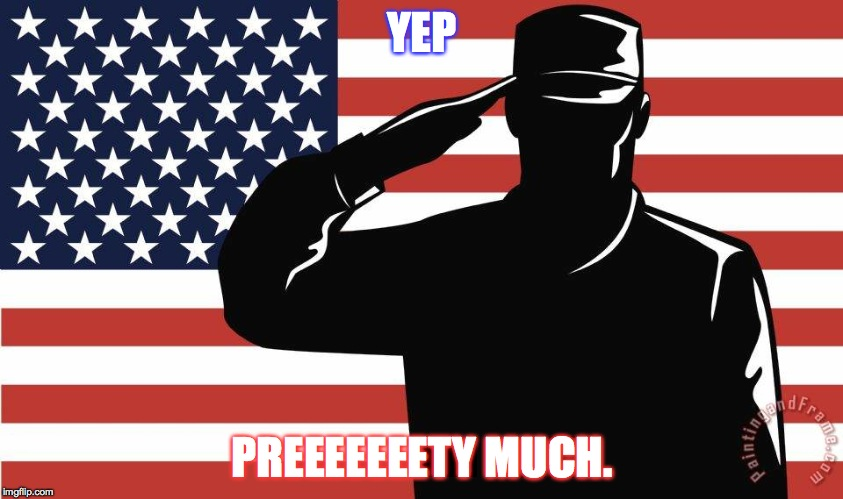 saluting soldier | YEP PREEEEEEETY MUCH. | image tagged in saluting soldier | made w/ Imgflip meme maker