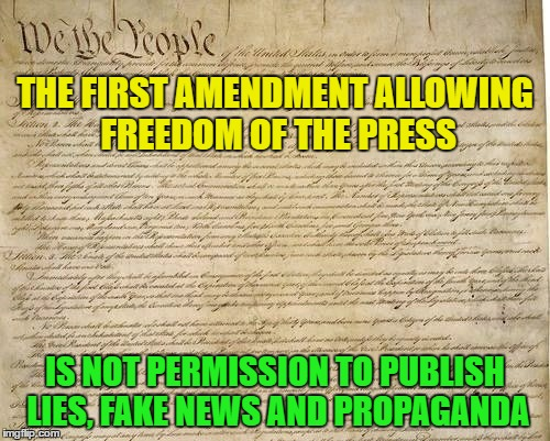 We The People Are On To You Fake Media Outlets And Your Propaganda Plan To Divide America | THE FIRST AMENDMENT ALLOWING FREEDOM OF THE PRESS IS NOT PERMISSION TO PUBLISH LIES, FAKE NEWS AND PROPAGANDA | image tagged in first amendment,meme,we the people,fake news,msnbc,cnn | made w/ Imgflip meme maker