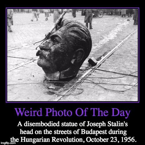 Stalin's Monument Was Torn Down | Weird Photo Of The Day | A disembodied statue of Joseph Stalin's head on the streets of Budapest during the Hungarian Revolution, October 23 | image tagged in funny,demotivationals,weird,photo of the day,joseph stalin,hungarian revolution | made w/ Imgflip demotivational maker
